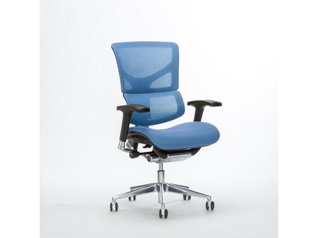 X3 w:o headrest blue